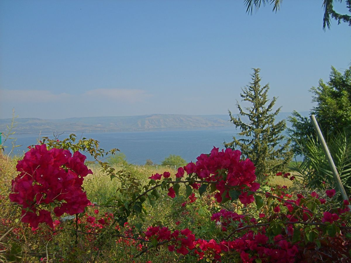 Mount_of_Beatitudes_View_Sea_of_Galilee_Golan_200704